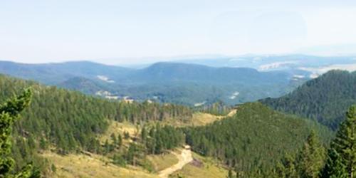 Limekiln Overlook Trail
